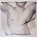 Torso print on cloth.jpg