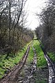 Track to North Hill Farm - geograph.org.uk - 360819.jpg