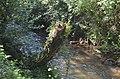 Trilho do rio Febro IV (33789833901).jpg