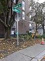 Trimming maple tree Lyndonville VT October 2018.jpg