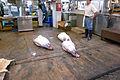 Tuna on the Floor (2678125489).jpg