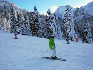 Twin-tip ski - Skier on twin-tip skis