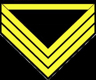 Quartermaster sergeant - U.S. Cavalry company quartermaster chevrons
