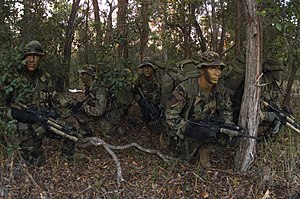 Infiltration tactics - Deep Reconnaissance Platoon on exercise in 2003, Bravo Company, 3rd Reconnaissance Battalion, US 3rd Marine Division
