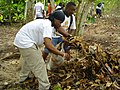 US Navy 050113-N-8447S-002 Sailors assigned to the guided missile cruiser USS Hue City (CG 66), volunteer their time to assist citizens of Seychelles by cleaning up the island during a scheduled port visit Jan. 8-13.jpg