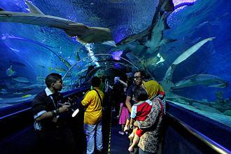 Aquaria KLCC - Image: Underwater tunnel in Aquaria KLCC