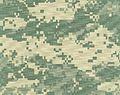 Universal Camouflage Pattern (UCP).jpg