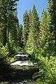 Upper Rogue River, Rogue River Siskiyou National Forest (23825660472).jpg
