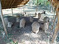 Uxmal Falos monuments.JPG