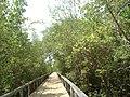 Vão da Ponte Mangue Seco - panoramio.jpg
