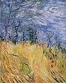 Van Gogh - Rand eines Weizenfeldes mit Mohnblumen.jpeg