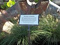 Vero Beach FL old diesel plant flywheel sign01.jpg