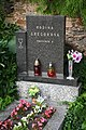 Veselí-evangelický-hřbitov-komplet2019-106.jpg