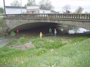 Vine Street Bridge - Image: Vine Street Bridge Fayette County Iowa 01