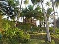Viper island andmans (7).jpg