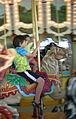 WPZ carousel 02.jpg