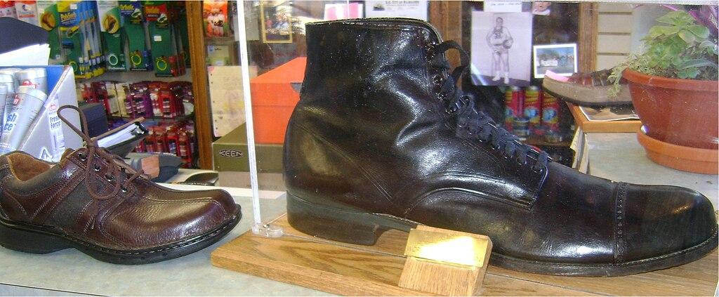Wadlow Shoe Size