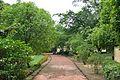 Walkway - Malancha - Santiniketan 2014-06-29 5326.JPG