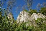 Warstein-Wildpark 2007-04-30 17-32-32 (1174884445).jpg