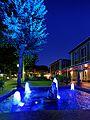 Wasserspiele an einem Sommerabend im Bad Mergentheim Kurpark. 05.jpg
