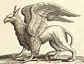 Wenceslas Hollar - A griffin (cleaned background).jpg