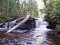 West Branch Sturgeon Falls - panoramio.jpg