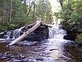West Branch Sturgeon Falls - panoramio.jpg