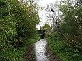 Wet footpath at Lasswade - geograph.org.uk - 1026988.jpg