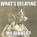 What's Delaying My Dinner.png