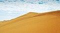 White Desert.jpg
