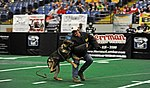 Whiteman Warriors shine at Missouri Outlaw Military Appreciation Game 130406-F-EA289-019.jpg