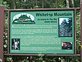 Whitetop Mountain (Virginia) sign - An Island In the Sky Under Stress - panoramio.jpg
