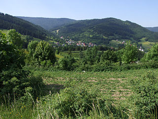 Poręba Wielka, Limanowa County Village in Lesser Poland Voivodeship, Poland