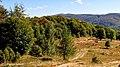 Wielka Rawka z żółtego szlaku - panoramio.jpg
