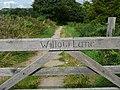 Willow Lane Packhorse Trail - geograph.org.uk - 924642.jpg