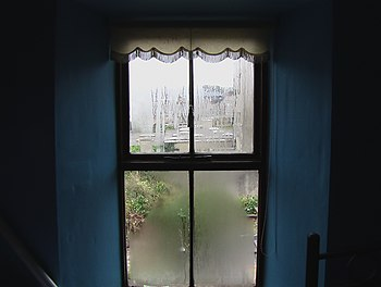 Condensation in Windows
