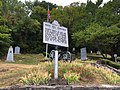 Winstead Hill near Franklin Tennessee.jpg
