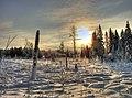 Winter sun - panoramio - SkyDreamerDB.jpg
