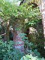 Wnętrze ruin Pałacu we Włodowicach.jpg