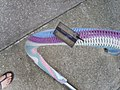 Yarn bomb - bike stand (5521492500).jpg