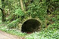 Yealmpton, limekiln by disused railway - geograph.org.uk - 428979.jpg