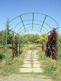 Yerevan Botanical Garden 1n (12).jpg