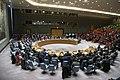 Yukiya Amano briefs Security Council (01890344) (47527122511).jpg