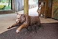 ZSL London - Leaping tiger sculpture (02).jpg