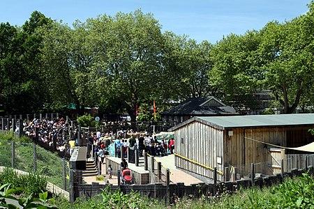 Zoo London