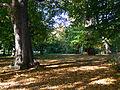 Zabytkowy park w Rzucewie.jpg