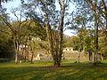 Zona arqueológica Bonampak.jpg