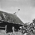 """Mlatiški puš?lc"" na strehi poda krade, Male Vodenice 1956.jpg"