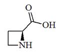 (S)-(-)-2-Azetidinecarboxylic acid.png
