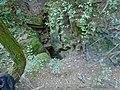 Ürömi-víznyelőbarlang1.jpg